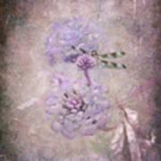 Lantana In Purple Art Print