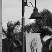 Lantana Lamp Post Art Print