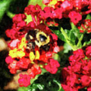 Lantanas And The Bee Art Print