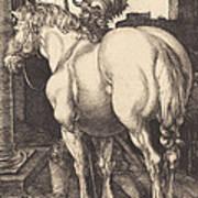 Large Horse Art Print