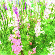 Larkspur Flowers In Soft Oil Style Art Print