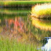 Stillness Of Late Summer Marsh  Art Print