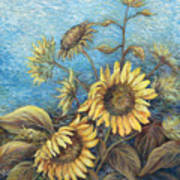 Late Sunflowers  Art Print