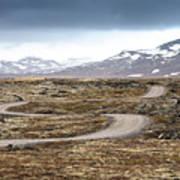 Lava Field In Iceland Art Print