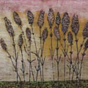 Lavandula Angustifolia II Art Print