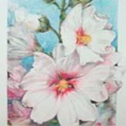 Lavater Art Print