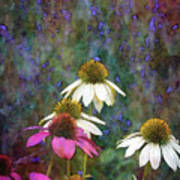 Lavender And Cones 1636 Idp_2 Art Print