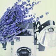 Lavender And Kodak Brownie Camera Art Print
