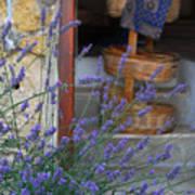 Lavender Blooming Near Stairway Art Print