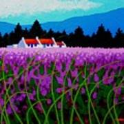 Lavender Field - County Wicklow - Ireland Art Print