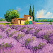 Lavender Fields In Provence Art Print