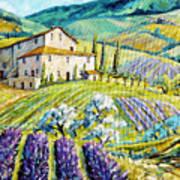 Lavender Hills Tuscany By Prankearts Fine Arts Art Print