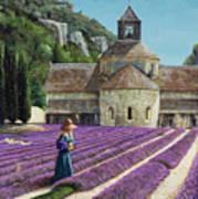 Lavender Picker - Abbaye Senanque - Provence Art Print