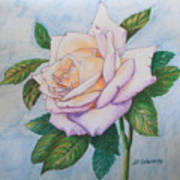 Lavender Rose Art Print