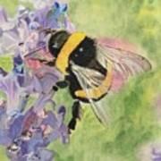 Lavender Visitor Art Print