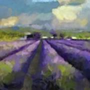 Lavenders Of South Art Print