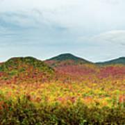 Layered Adirondack Colors Art Print