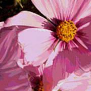 Layers Of Pink Cosmos - Digital Art Art Print