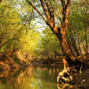 Lazy Afternoon On The Creek 2 Art Print