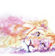 Lazy Days - Lion Art Print