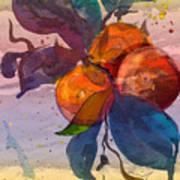 Le Temps Des Oranges Art Print