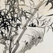 Leaf C Print by Rang Tian