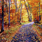 Leaf Covered Road Art Print by David Lloyd Glover