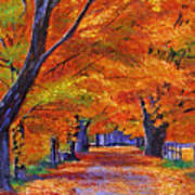 Leafy Lane Art Print by David Lloyd Glover