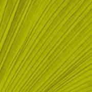 Leafy Leaf Art Print