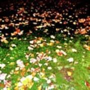 Leaves 2 Art Print