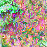 Leaves And Colors Art Print