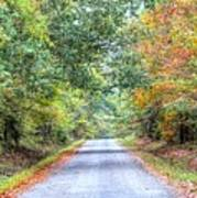 Leaves Changing In The Fall Near Collierville,tn Art Print