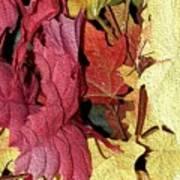 Leaves Fall Art Print