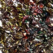 Leaves Hidden Everywhere Art Print