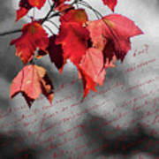 Leaves Of Red Art Print