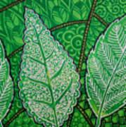 Leaves Of Spring Art Print