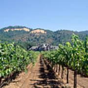 Ledson Winery And Vineyard Sonoma County California Art Print