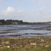 Lelant Water Hayle Estuary Art Print