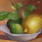 Lemon And Limes Still Life Art Print