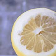 Lemon Half Art Print