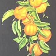 Lemon Mandarine Suite Art Print