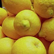 Lemon Squeeze Art Print