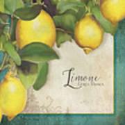 Lemon Tree - Limone Citrus Medica Art Print
