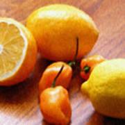 Lemons And Peppers Art Print