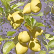 Lemons Purple Pastel Art Print