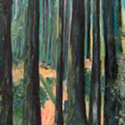 Lena Lake Trail Art Print