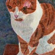 Leo The Cat Art Print