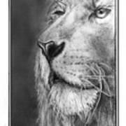 Leo The King Art Print
