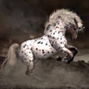 Leopard Appaloosa Shiloh Art Print