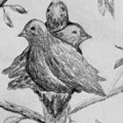 Les Trois Oiseaux Art Print